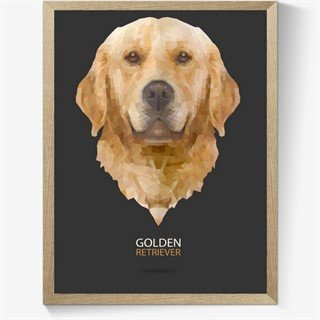 Plakat med geometrisk Golden-retriever