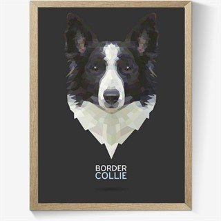 Plakat med en Geometrisk Border Collie